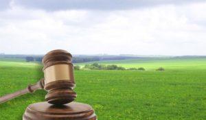 Продажа земельного участка на торгах