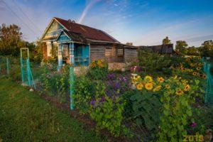 Дачные домики и участки облагаются налогом на имущество