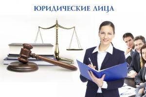 Виды юридических лиц