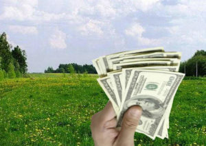 Выкуп земельного участка из аренды