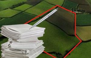 Сбор документов необходимых для оформления прав на землю
