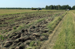 Земли сельхозназначения в муниципальной собственности