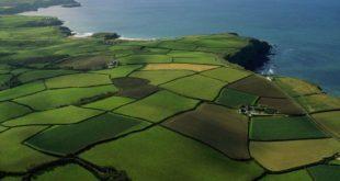 Формы собственности на земельные ресурсы